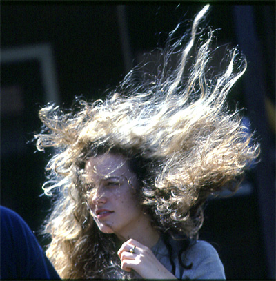 wind-blown