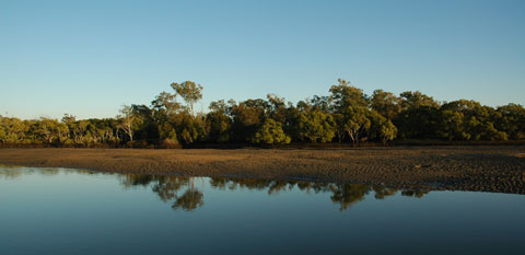 boondall_wetlands