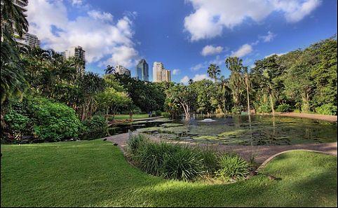 brisbane-city-botanic-gardens-482x298
